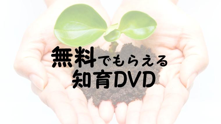 【お得情報】無料でもらえる知育DVD2歳~5歳におすすめ教育動画