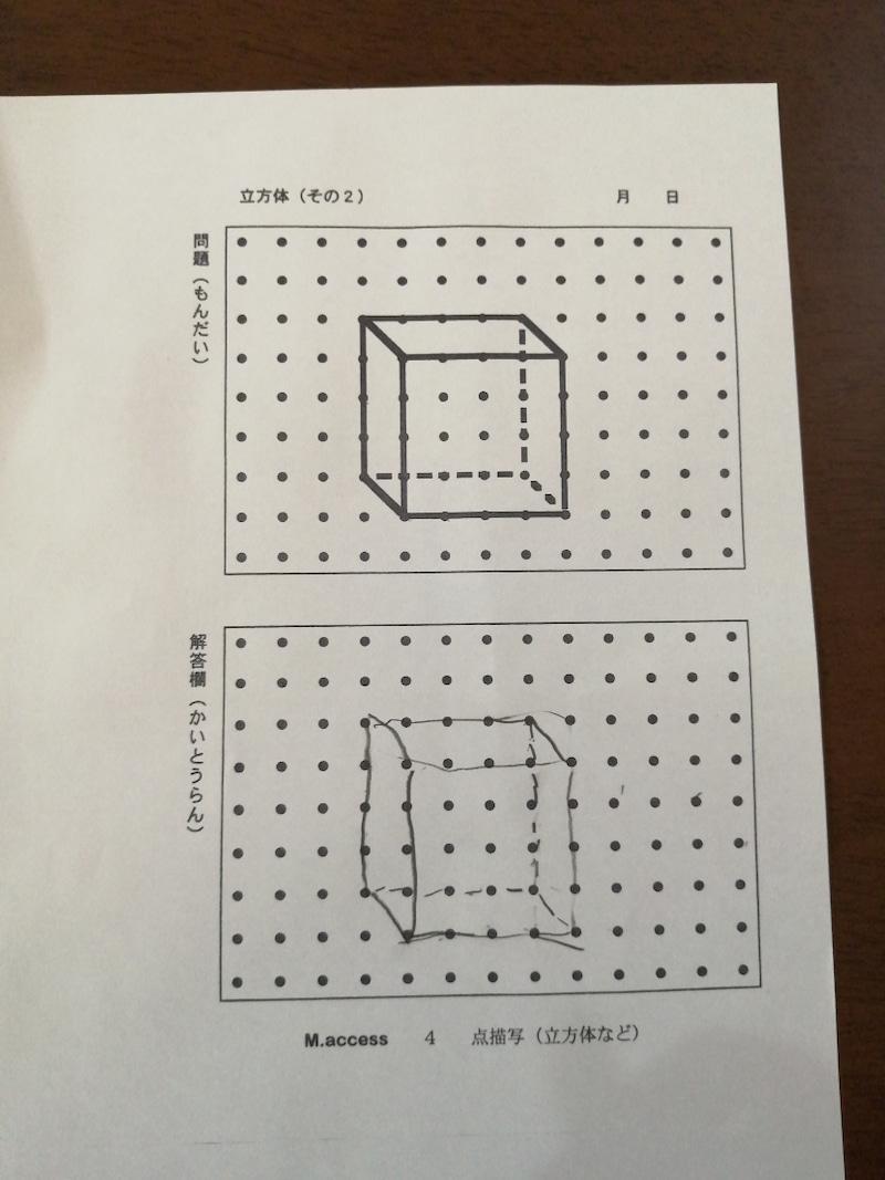 立体点描写サイパーVSピグリ。ドリルの難易度比較