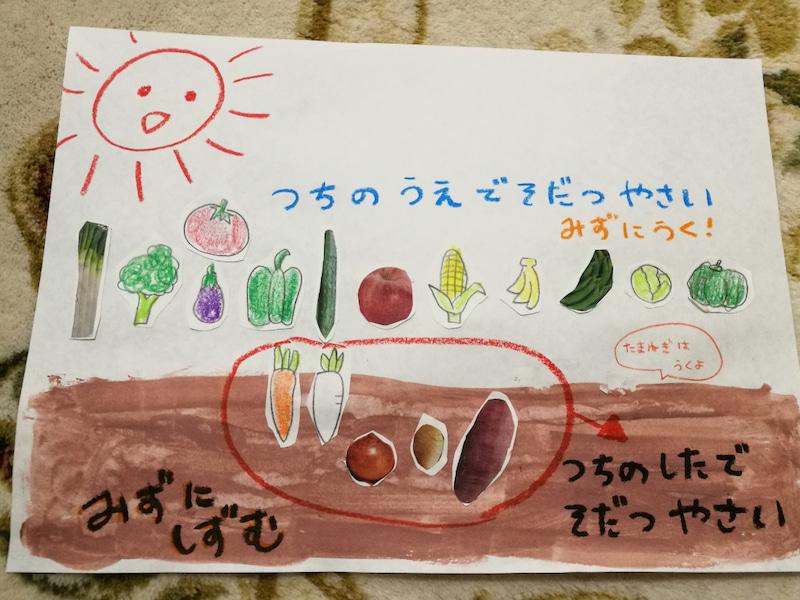 手作り教材知育ポスター:水に浮くもの沈むもの野菜ポスター(理科)