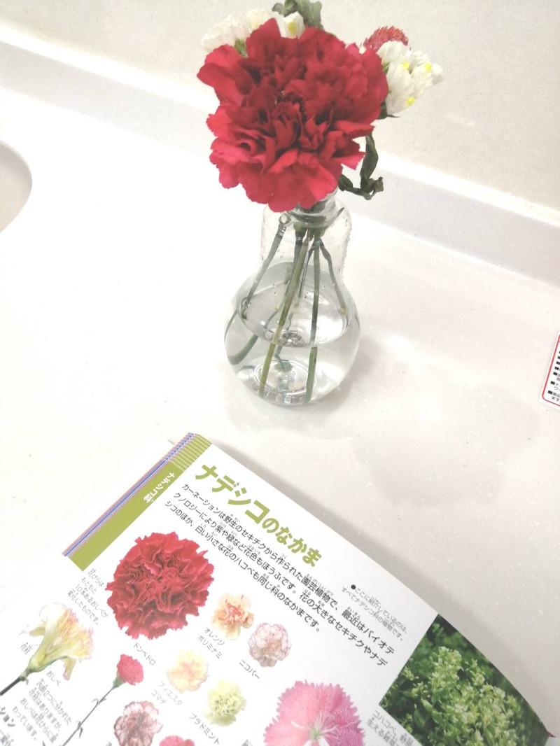 ブルーミーライフ:実際に届いたお花は?お花の定期便ってどんな感じ?