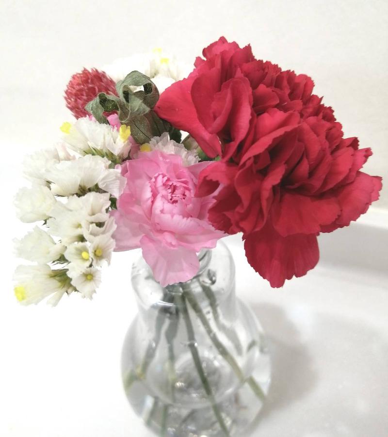お花の定期便で子供と花育花活しよう♪ブルーミーライフの口コミ感想