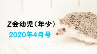 幼児Z会の年少2020年4月号口コミ!ぺあぜっと体験ブログレポ